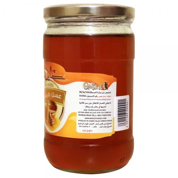 عسل طبیعی چند گیاه گابریل وزن 1 کیلوگرم